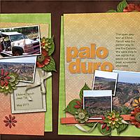 Palo_Duro_copy.jpg