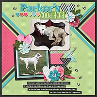 Parker_s_Good_Deed.jpg