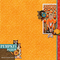 Pumpkin_Patch_Severs_2014cap_whitespacetemps25-3.jpg