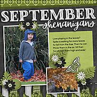 September_Leaves.jpg