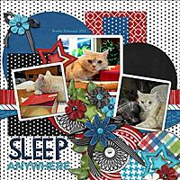 Sleep_Anywhere_copy.jpg