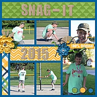Snag-It-2015_600_.jpg