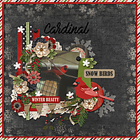 Snow_Birds.jpg