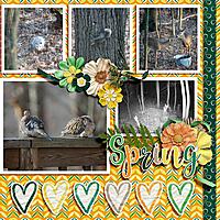 Spring_Wildlife_dss.jpg