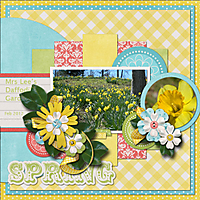 Spring_copy2.jpg