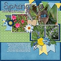 Spring_has_sprung21.jpg