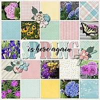 Spring_is_here_again.jpg