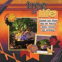 TreeOfLifeNight_18-copy.jpg