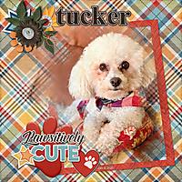 Tucker_600.jpg