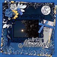 Winter-moonlight.jpg