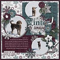 Winter_is_coming2.jpg