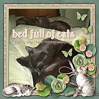 bedofcats.jpg