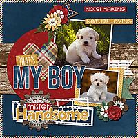 cap_aboutaboy_That_s_My_Boy_Mr_Handsome_web.jpg