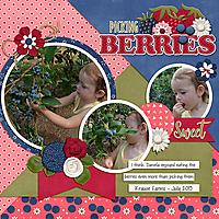 cap_berrysweet_berrypicking2015web.jpg