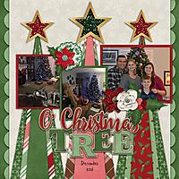 cap_christmasjoy_altimasport.jpg