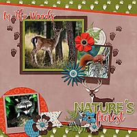 cap_inthewoods_WildernessCreatures_web_.jpg