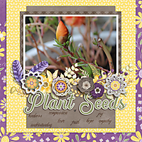 cap_plantseedstemps-kit.jpg