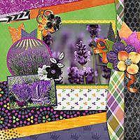 cap_stolenwings_LavenderFarm_web.jpg