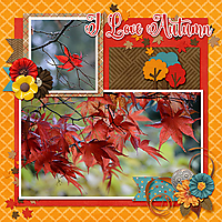 cap_thebigpictemps20_and_cap_AllAboutFall_leaves_web.jpg