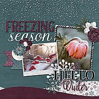 cap_winteriscoming_freezingseason_web.jpg