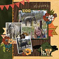 discover-the-elephants.jpg