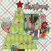 keesha-ChristmasTreeDecorating2016-1.jpg