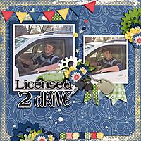 licensed-to-driveWEB600.jpg