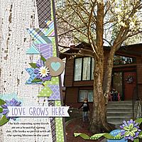 love-grows-here5.jpg
