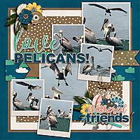 pelicansWEB600.jpg