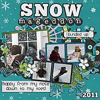 snowmageddon2011.jpg