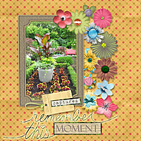 ariadnes_flowers_GS11.jpg