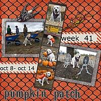 2012-week-41.jpg