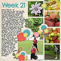 2013_Week21.jpg