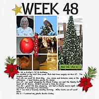 2013_Week_48.jpg