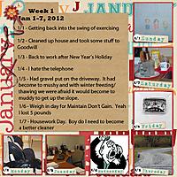 Week-1---Jan-1-to-7.jpg