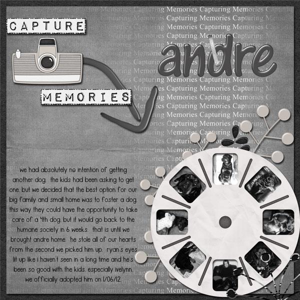 Capture Memories