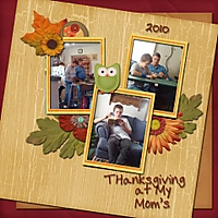 Thanksgiving_at_my_Moms_2010_resized.jpg