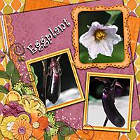 tms_happy_blooms_eggplant_-_Page_026.jpg