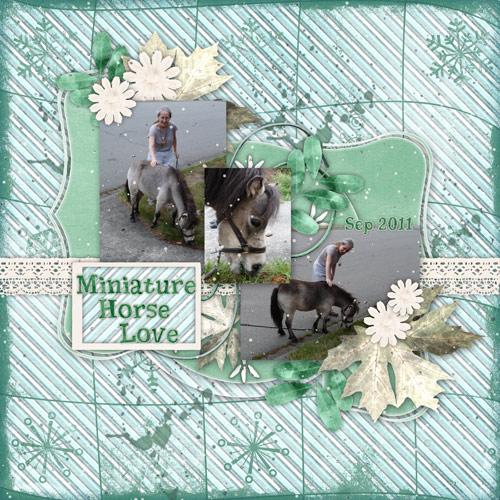 Miniature Horse Love