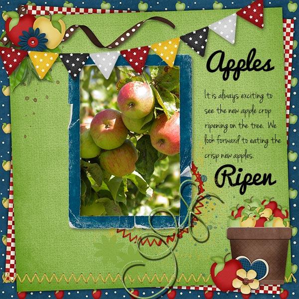 Apples_ripen