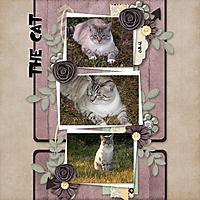The_Cat.jpg
