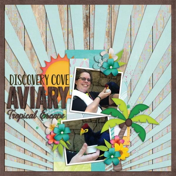 Discovery Cove Aviary