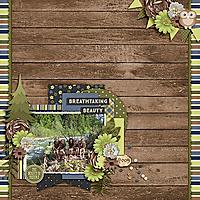 Aprilisa-NatureBeauty_PicturePerfect134_2009-copy.jpg