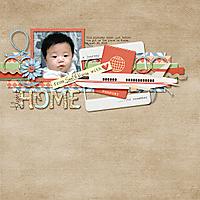 Flying-Home-WEB.jpg