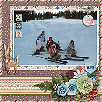 JoCeeDesigns-WinterWonderland-March2010-copy.jpg