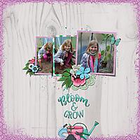 bloom-and-grow9.jpg