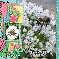 botanicalWEB2.jpg
