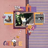 catitude.jpg
