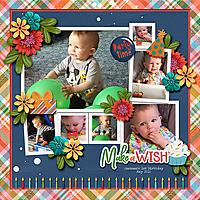 make-a-wish7.jpg