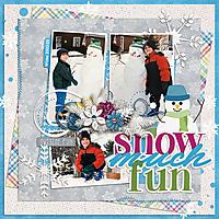snowmuchfunWEB2.jpg